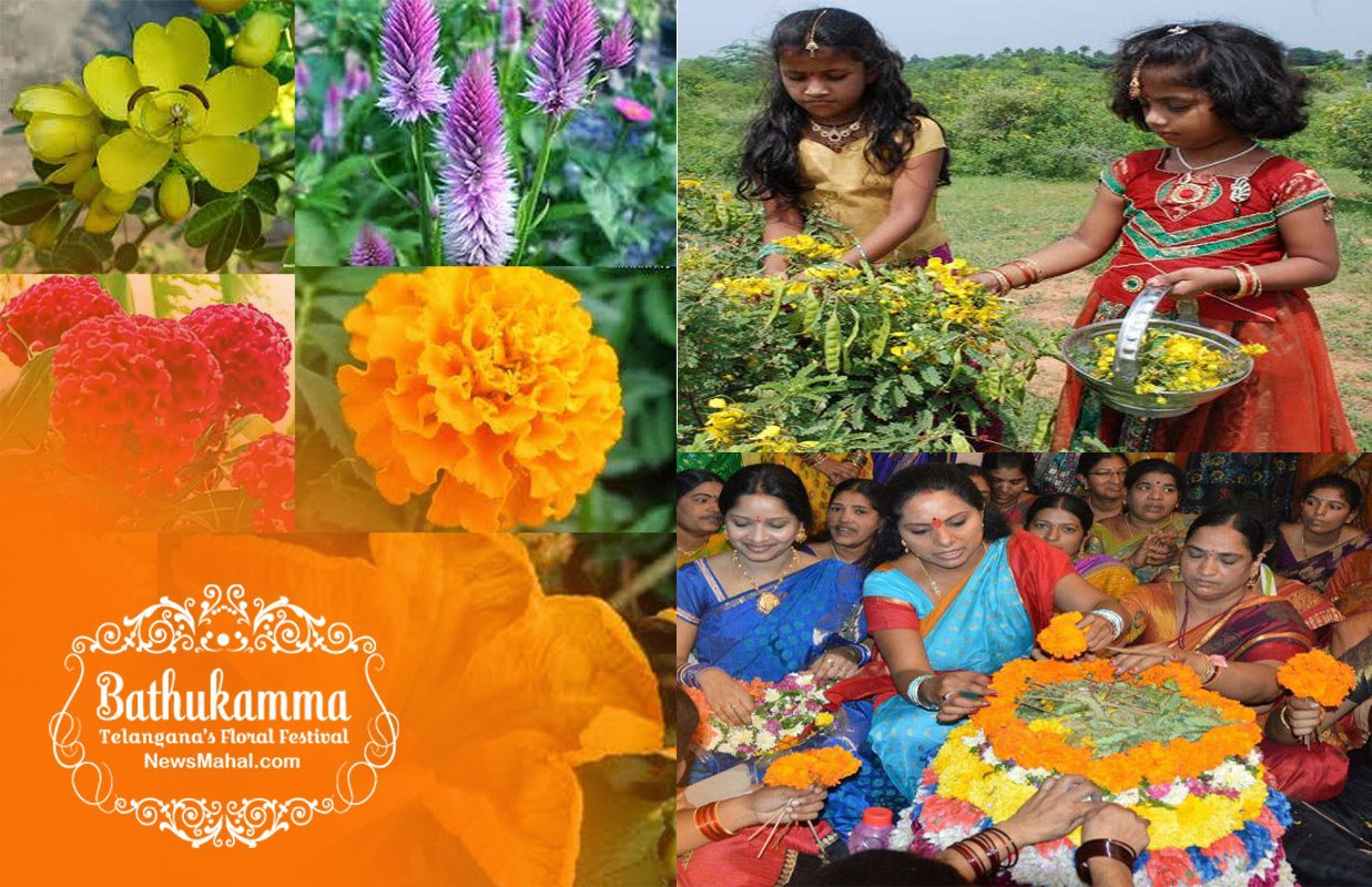 Bathukamma Images, Bathukamma Songs, Bathukamma History, Bathukamma Flowers