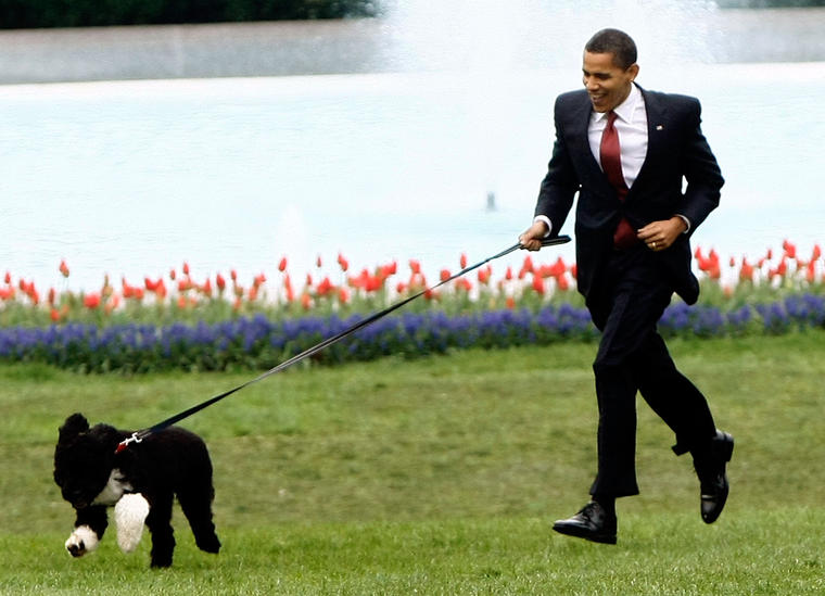 A Truck Filled With Weapons To D.C. To Kidnap Obamas' Dog, Secret Service Says